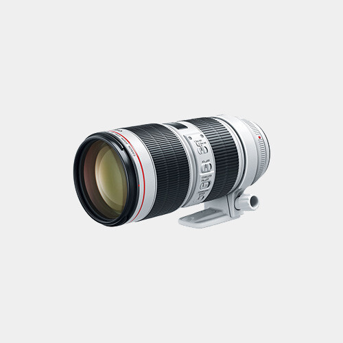 Canon 100-400mm f/4.5-5.6L IS USM