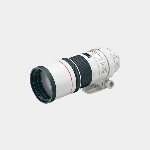 Canon 300mm f/4.0L IS