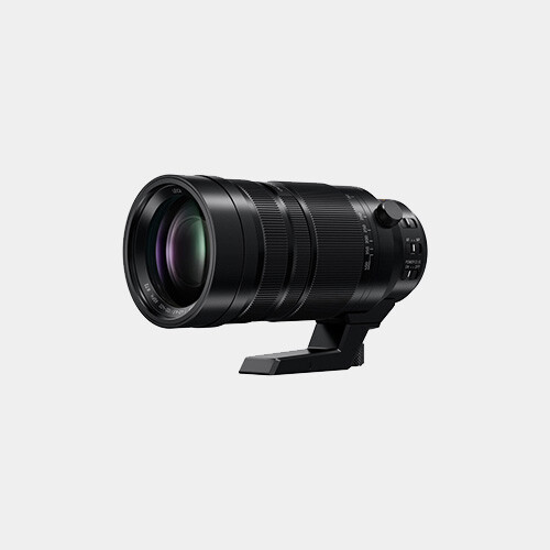 Panasonic Leica 100-400mm f/4-6.3 ASPH OIS